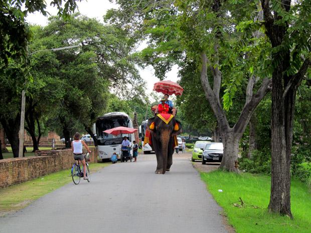 Слон в Аюттайе