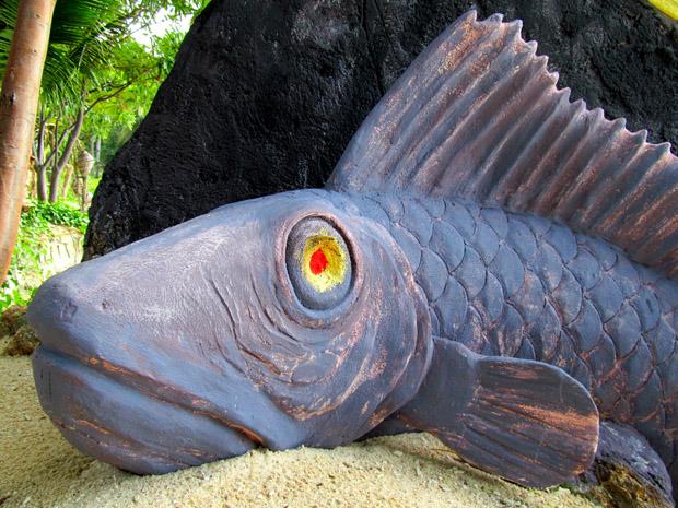 рыба на секретном пляже