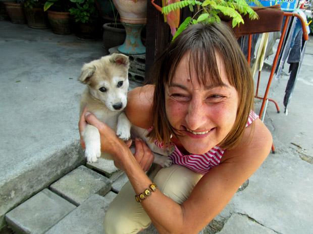 тайский щенок
