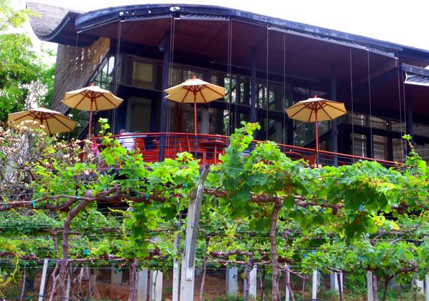 виноградники Хуа Хина