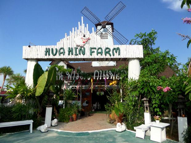 фарм и кофе
