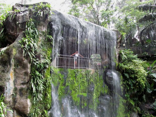 водопад в парке птиц