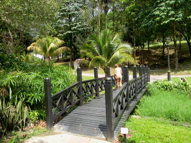 мостик в парке