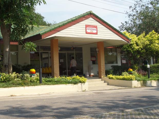 hua hin dogs center