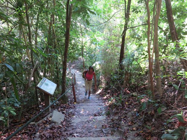 тропинка в национальном парке