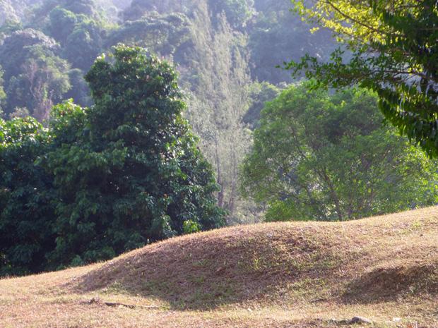 botanical garden penang