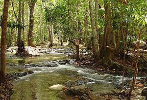 Банг Крам